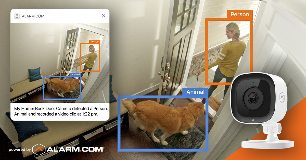 Pet Owner Video Analytics person with dog Amherst Alarm Alarm.com